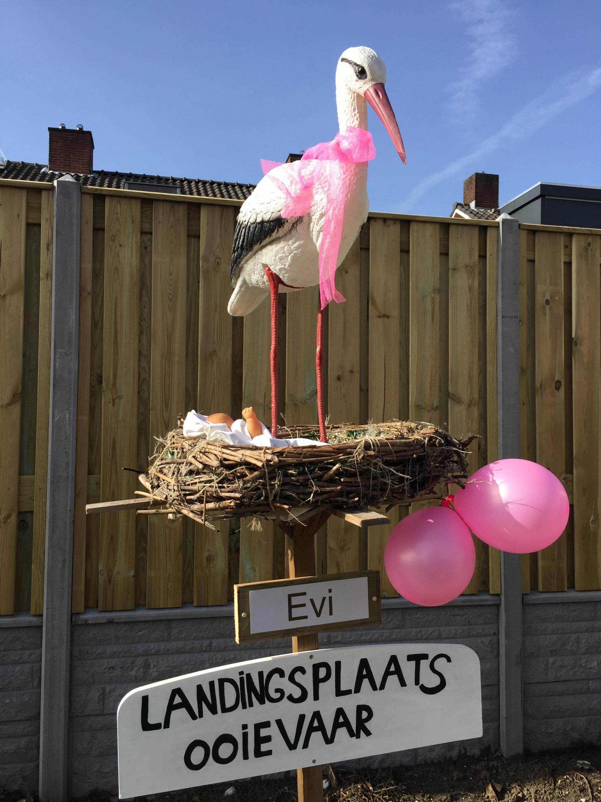 #19 0 R Ooievaar op nest, liggende baby, strikje om nek, 2 ballonnen