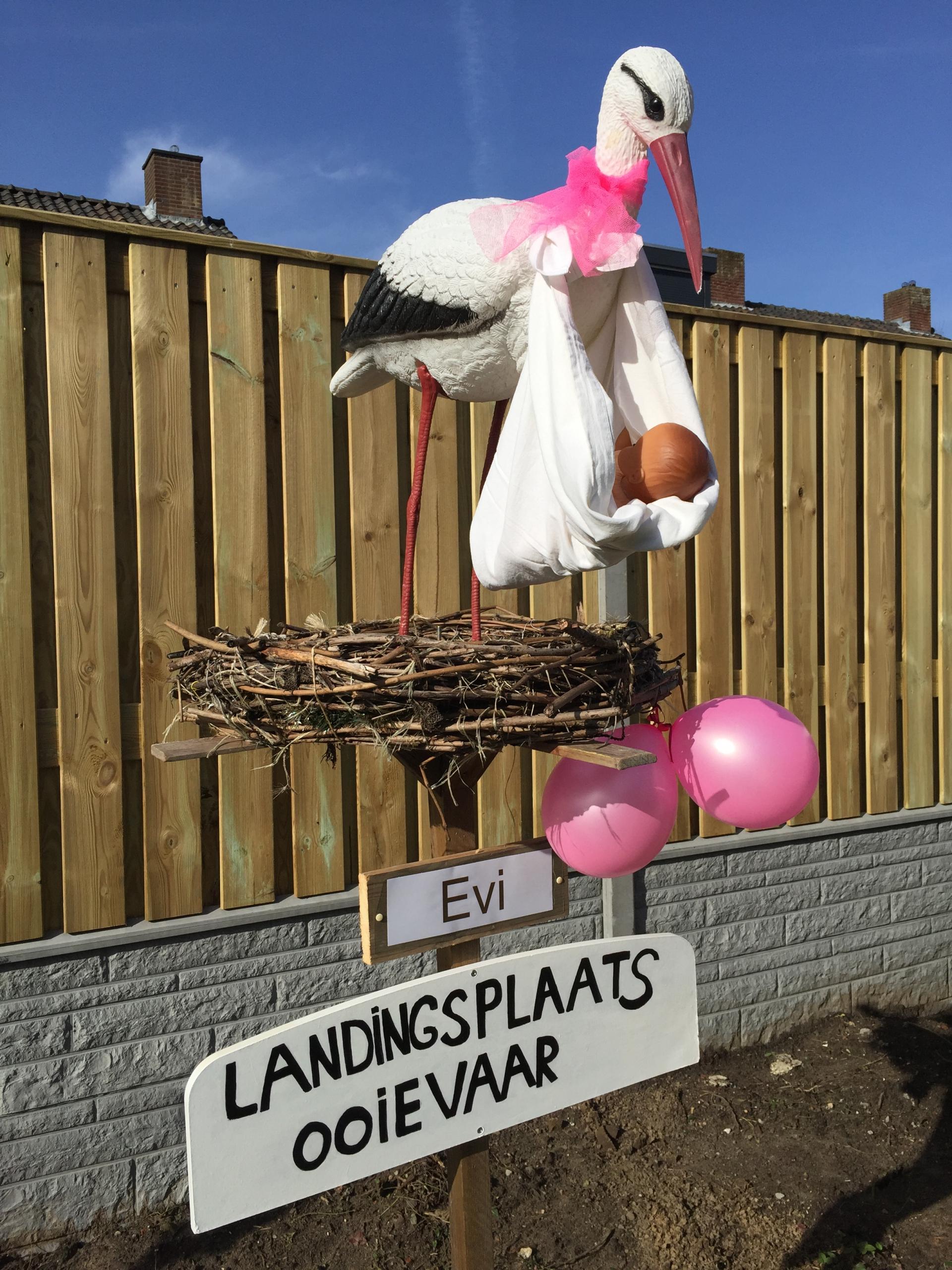 #19 2a R Ooievaar op nest met landingsplaats, hangende baby, strikje om nek, 2 ballonnen