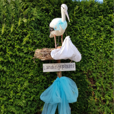 # 19 Ooievaar op nest landingsplaats blauw
