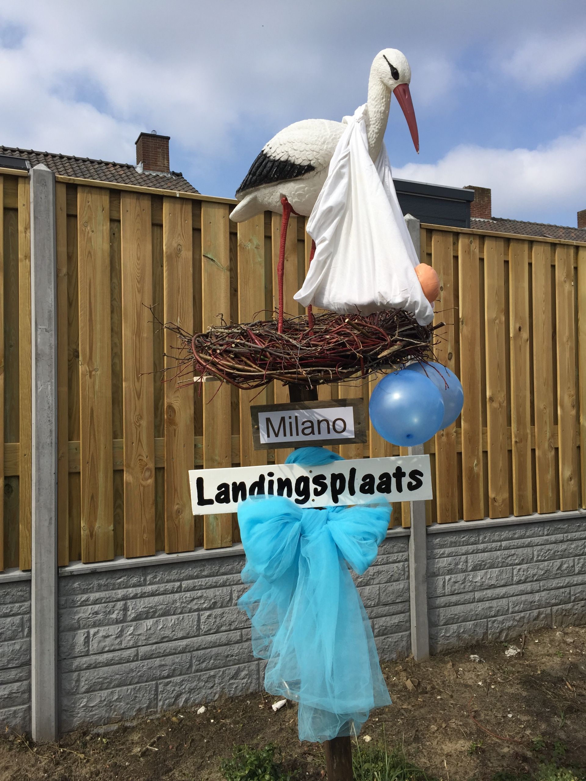 19 Ooievaar op nest met landingsplaats
